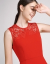Fitted Dress With Lace-Trimmed Neck